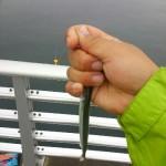 雨天のサヨリ釣行
