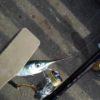 シロギス、サヨリリレー釣り